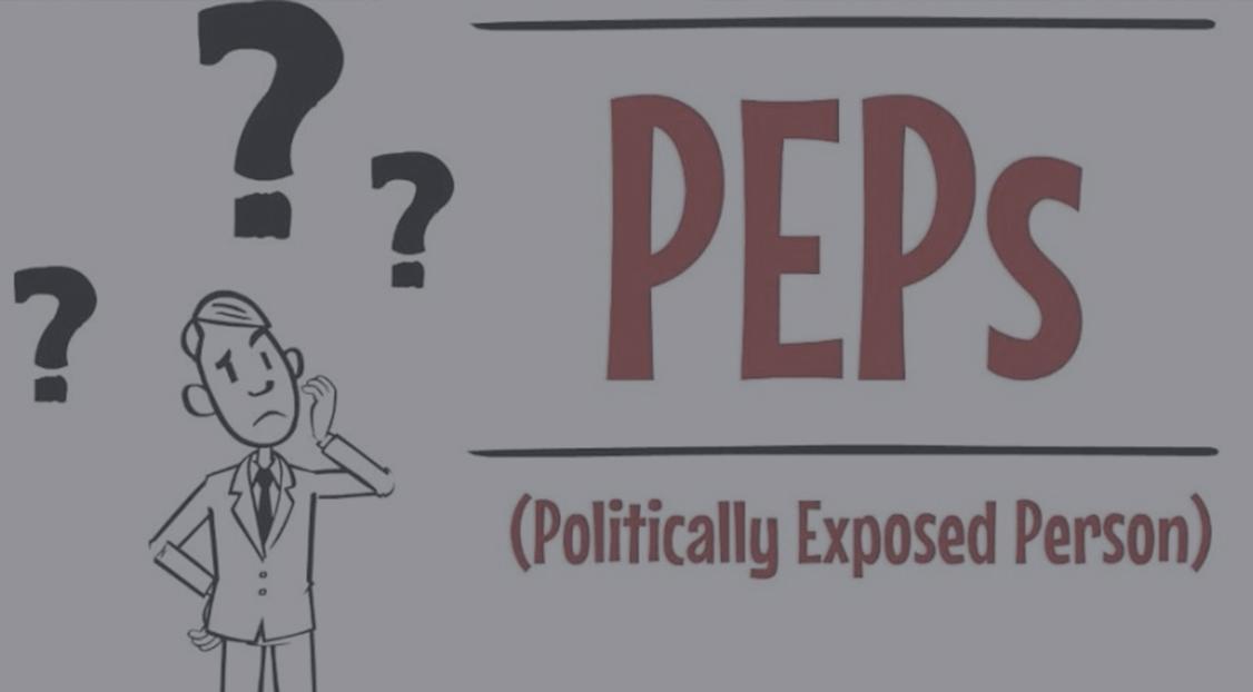 Представництво інтересів публічних діячів (РЕР)